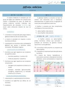Sistema endócrino (hipófise) - Patologia