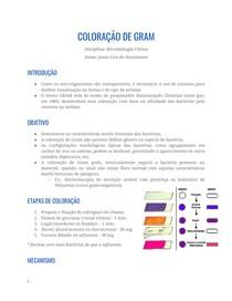 Resumo - Bacterioscopia (GRAM)