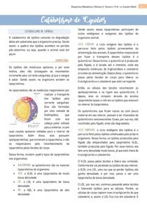Catabolismo de Lipídios