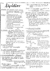lipídeos - bioquímica