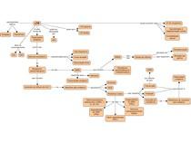 Mecanismos relacionados à LTP