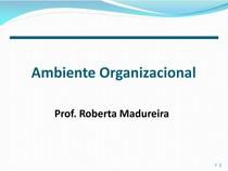 Administracao - Ambiente Organizacional