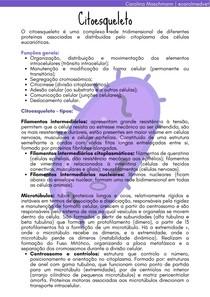 Citoesqueleto   Biologia Celular e Tecidual