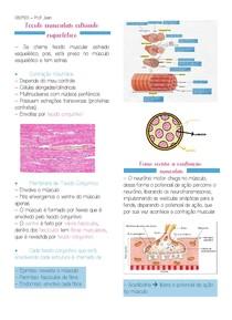 Tônus muscular estriado esquelético