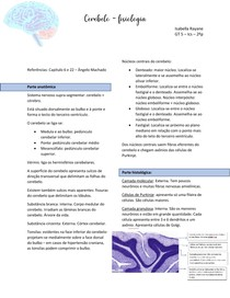 Fisiologia do Cerebelo