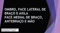 OMBRO FACE LATERAL DE BRAÇO E AXILA FACE MEDIAL DE BRAÇO ANTEBRAÇO E MÃO