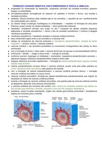 Formação Cavidade Amniótica, Disco Embrionário e Vesícula Umbilical - Semana 2 do Desenvolvimento Embrionário
