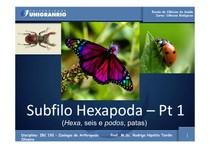 IBC192_-_Hexapoda_Parte_I_(NI)