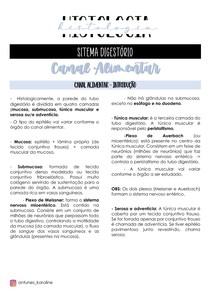 EMBRIOLOGIA E HISTOLOGIA - SISTEMA DIGESTÓRIO - CANAL ALIMENTAR