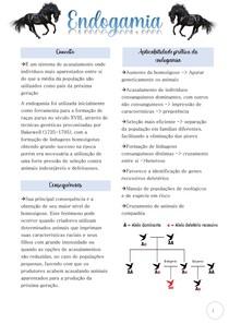 Endogamia (resumo)