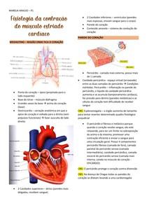 Fisiologia da contração do músculo estriado cardíaco