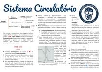 Sistema circulatorio pt 1: introdução (tipos de vasos)