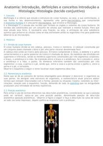 1 - Classificação do tecido Epitelial