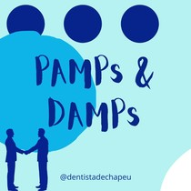 PAMPs e DAMPs