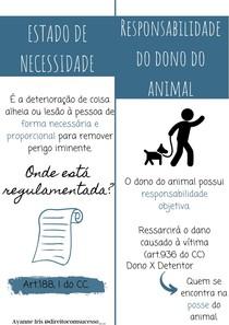 Estado de Necessidade e Responsabilidade do dono do animal