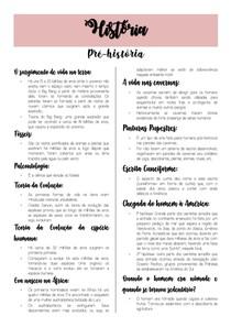 RESUMO PRÉ-HISTÓRIA-1