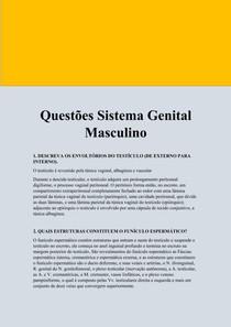 Questões Sistema Genital Masculino
