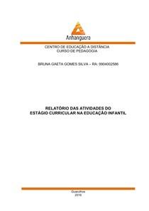Relatorio Estagio Educação Infantil Organização E Metodolo