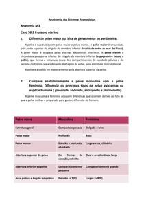 Casos Clínicos M3 Pr2 Anatomia Humana I 9