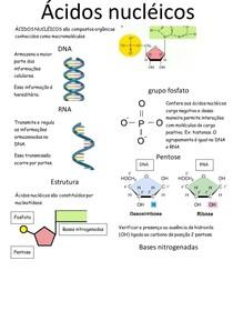 Ácidos nucleicos e replicação do DNA