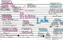 Hume & Locke [mapa mental]