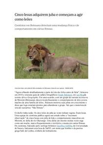 Curiosidades sobre as leoas