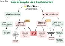 Mapa mental: Classificação das bacteriúrias