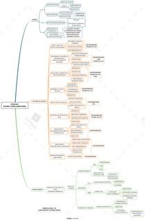 Mapa mental - Exames complementares da cefaleia