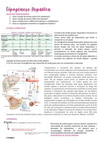 Lipogênese