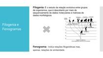 Diferença de Filogenia e Fenograma