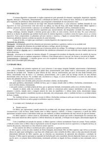 Aula 07 -Texto - sistema digestório - canal alimentar