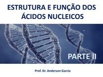 ESTRUTURA E FUNÇÃO DOS ÁCIDOS NUCLEICOS PARTE II