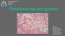 Pseudomonas Aeruginosas