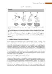 Questões do Caderno Guia - Fisiologia II