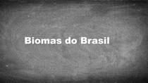 BIOMAS BRASILEIROS: Amazônia, Mata Atlântica, Cerrado, Caatinga, Pampa , Pantanal.
