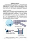 1. Membrana Plasmatica