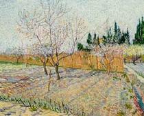 Vincent Willem van Gogh-pomar com pêssego-Trees-em-Blossom