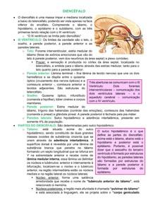Neuroanatomia: Diencefalo