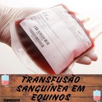Transfusão Sanguínea em Equinos