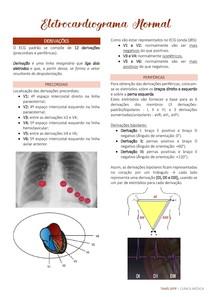 ELETROCARDIOGRAMA NORMAL
