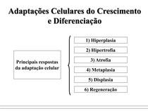 MODIFICAÇOES CELULARES