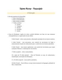 Fisiologia - Prosencéfalo