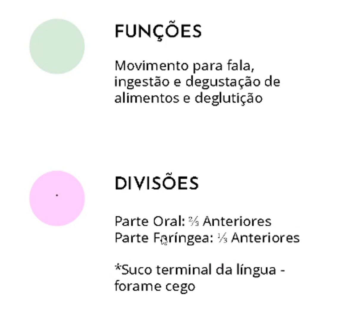Pre-visualização do material ANATOMIA DA LÍNGUA- ASPECTOS GERAIS - página 1