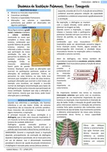 FISIO - Dinâmica da ventilação pulmonar, troca e transporte