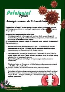 Patologia Comum do Sistema Urinário
