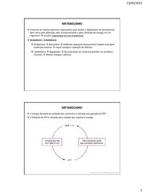 Introducao ao metabolismo glicolise fermentacao e ciclo de krebs