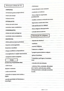 Tecido Conjuntivo II