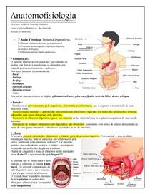 ANATOMOFISIOLOGIA    Sistema Digestório