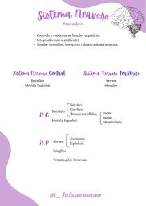 Sistema Nervoso Part.1