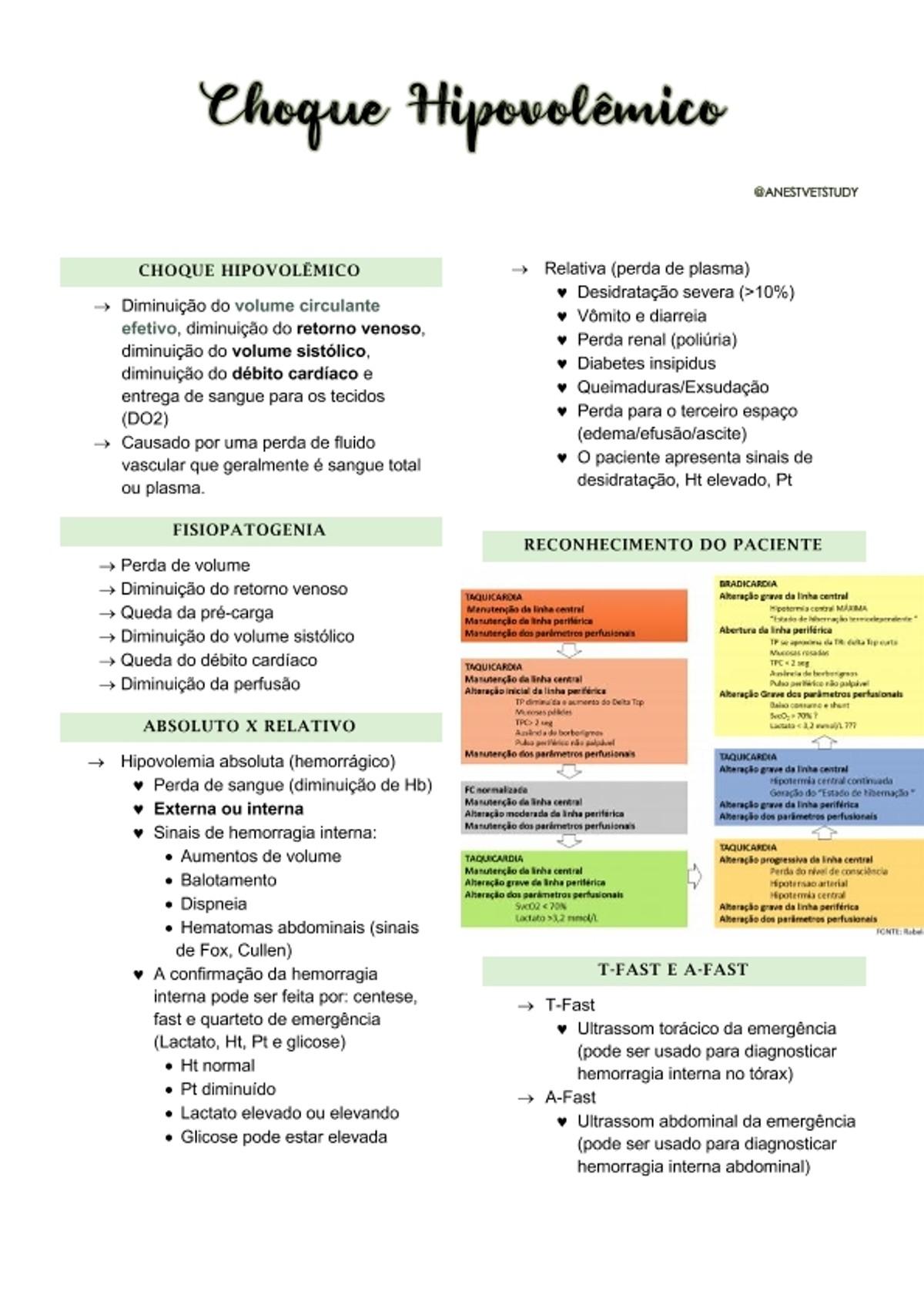 Pre-visualização do material Choque Hipovolêmico - página 1